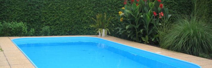 Pool with skimmer